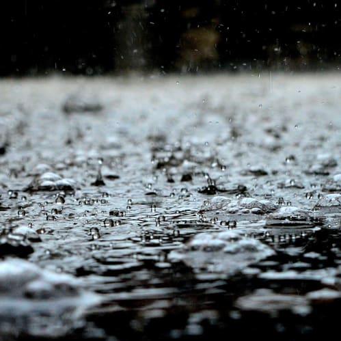 סדנת לימוד וכתיבה – גשם